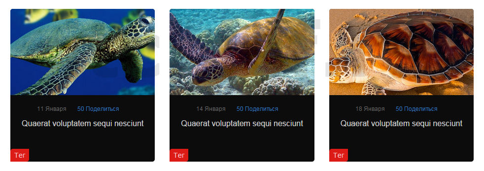 JavaScript - сниппет галереи статей
